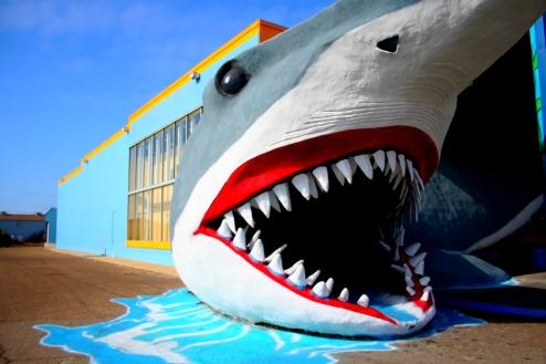 Jump this shark.